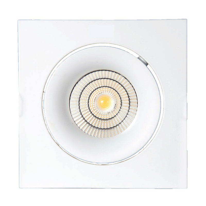 RD-DCT-9015(Housing+UM50f-B 12W +non-dimmable driver)